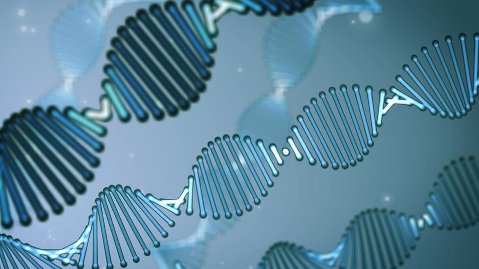 Still frame uit wetenschappelijke animatie over DNA